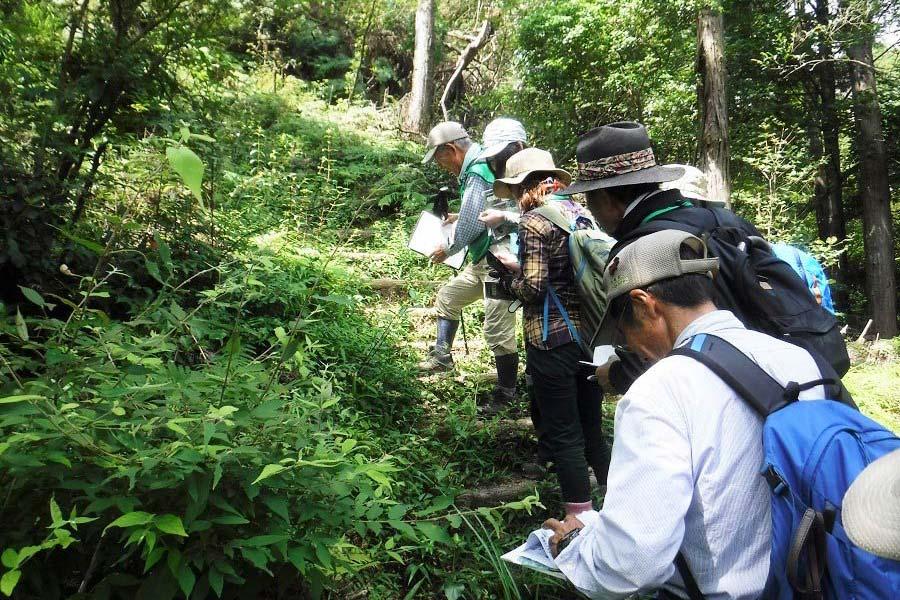 森林自然観察